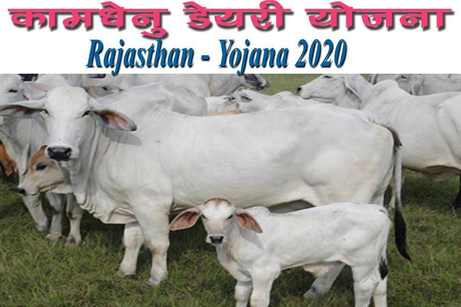 Rajasthan Kamdhenu Dairy Yojana