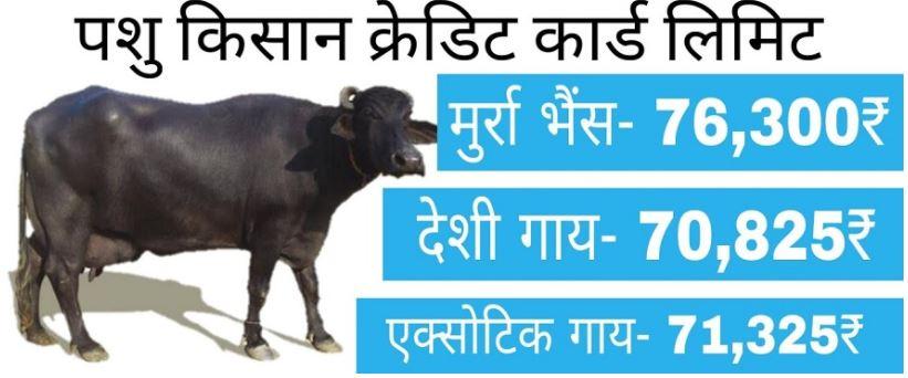 pashu bhan yojana