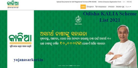 Odisha KALIA Scheme List 2021